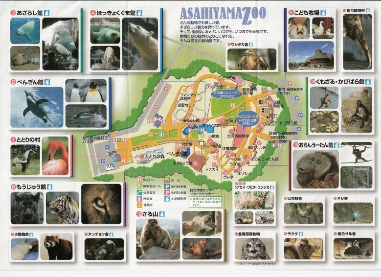 旭山動物園マップ