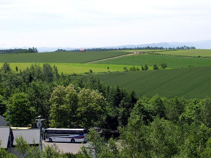 拓真館前の丘からの景色